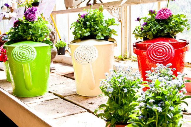 arredare-il-tuo-giardino-tendenze-e-accessori-utili